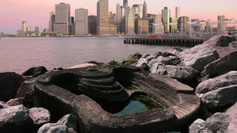 An ECOncrete tide pool. Photo © courtesy ECOncrete